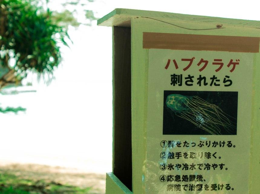 Ishigaki_Japan_21