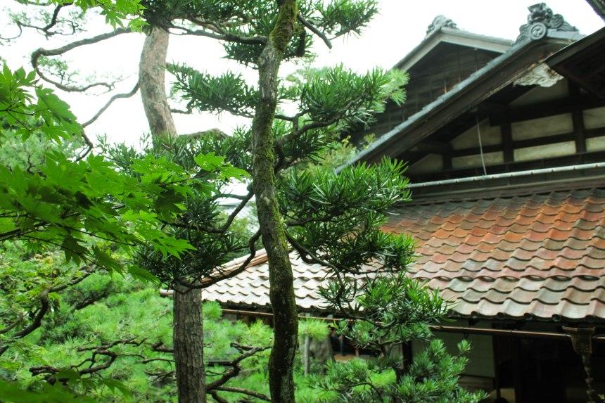 Kanazawa_Japan_16